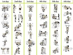 6 day workout routines