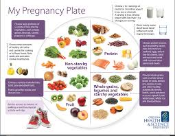How To Make A Healthy Diet Chart Healthy Diet Chart In Pregnancy My Plate A Blueprint For