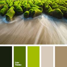 Color Palette #1632