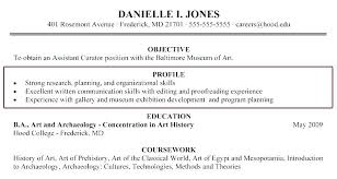 Resume Profile Amazing Outstanding Resume Profile Sample Personal Samples Summary Examples