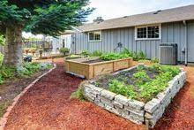 pressure treated lumber for raised beds