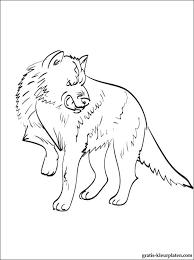 Print Kleurplaat Wolf Gratis Kleurplaten