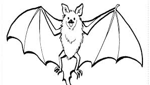 Cute Bat Coloring Pages To Print Page Baby Bats Ring Of Colouring