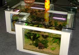 full size of desk extraordinary i have decided that my aquarium obsession would be best