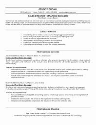 Resume Format For Operations Profile Luxury Property Manager
