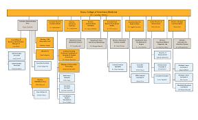 Veterinary Organizational Chart Cvm Organizational Chart