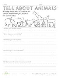 ielts essay useful vocabulary list pdf