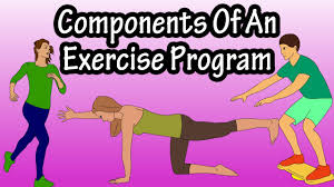 Gym Exercise Planner Exercise Programming Components Of An Exercise Workout Program Routine Fitness Programming Design