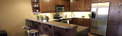 repairing your kitchen cabinets