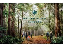 S9:E5 - BETTER PLACE FORESTS || SANDY GIBSON 09/18 by Life is a Sacred  Journey | Caregiving