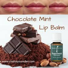 diy chocolate mint lip balm made with young living peppermint oil