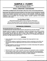 Free Professional Resume Examples Enchanting Resume Letters Examples Of Professional Resumes 48 And How To