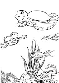 Small Picture Sea Turtle Coloring Page For Kids Animal Coloring pages of