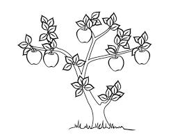 Gambar mewarnai buah apel terdapat banyak sekali jenis buah buahan dari mangga anggur jeruk melon apel dan masih bnayak lagi beberapa buah yang. 21 Sketsa Gambar Apel Lengkap Mudah 3d Beserta Manfaatnya