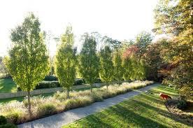 Garden Design Images Pict Awesome Design Ideas
