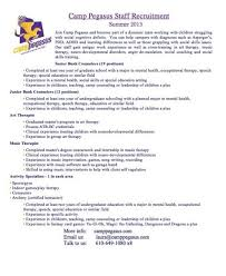 youth counselor resume sample resume for youth counselor sample resume for youth counselor