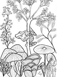 Small Picture Cute tree frog and mushrooms Coloring page Floral Coloring Books