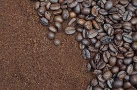 Coffee shop owners order bulk coffee. Poverty Bay Coffee Company