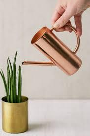 Roxy Rose Gold Mini Watering Can