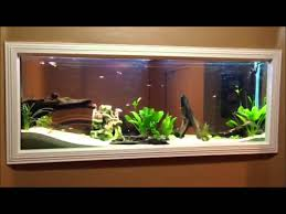 fish tank for office. Office Fish. Full Size Of Diy Wall Built In Fish Tank 150gl Aquarium Freshwater Set For W