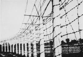 barbed wire fence concentration camp. Perfect Concentration The Barbed Wire Fence That Enclosed The Breendonck Concentration Camp Inside Barbed Wire Fence Concentration Camp O