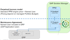 project management in a nutshell for sap solution manager 7 2 itppm licensing jpg