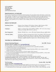 Sample Summary Statement Resume Writing A Resume Summary Elegant 13 Luxury Sample Resume Summary