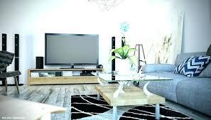 interior grey sofa living room couch light satisfying decorating ideas fantastic 13 light grey