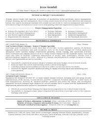 Technical Project Manager Sample Resume Podarki Co