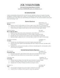 Build My Resume Online Free New Resume Help Online Colbroco