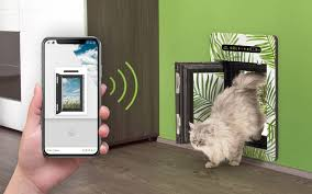 the best smart dog doors that you ll