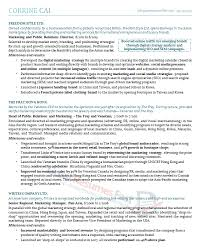 Great Resume Examples Extraordinary Executive Resume Samples Professional Resume Samples