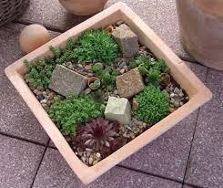 Small Picture Desert Rock Garden Ideas Elegant Landscaping Idea With Desert