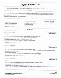 Best Professional Resume Format Simple Best Professional Resume Format DUTV