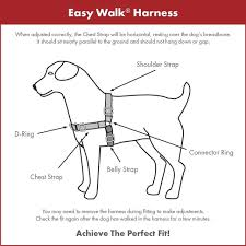 Petsafe Easy Walk Harness 1 8m Lead For Extra Small Dogs No Pull Collar Red