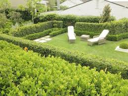 Small Picture a traditional old fashioned suburban garden gary debeer the