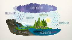 Image result for water cycle song vimeo