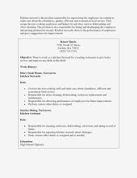 Kitchen Helper Job Description Resume Kitchen Appliances