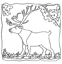 Polar Animals Coloring Pages 1 Arctic And Antarctica