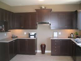 Kitchen Cabinet Espresso Color November 2016s Archives Espresso Kitchen Cabinets Kitchen
