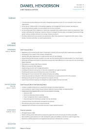 chief financial officer resumes chief financial officer resume samples templates visualcv