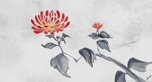sumi e chrysanthemum