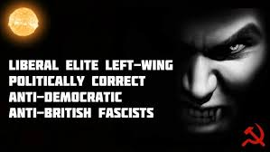 the scourge of liberal elite left wing politically correct anti liberal elite left wing fascists