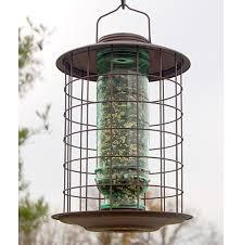caged bird vintage feeder quality caged squirrel proof bird feeders at bird garden