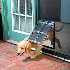 keep dogs from scratching door keep dogs from scratching door protects screen or other type door