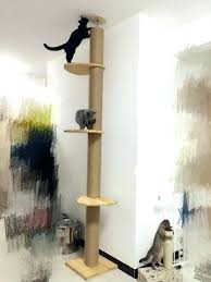 cat trees for sale. Unique Cat Tree Furniture Modern Choosing Throughout Stylish Decorations . Trees For Sale S