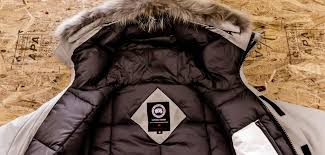 ed canada goose doesn t exist