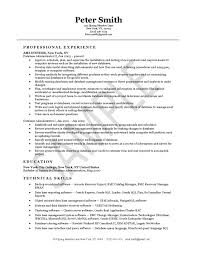 Database Administrator Resume Example