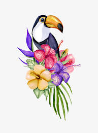 watercolor flowers and birds decoration watercolor flower bird free png image and clipart