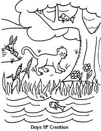 Day 1 Of Creation Coloring Pages At Getcoloringscom Free